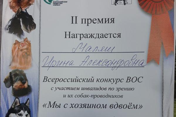 Диплом - Маляш Ирина Александровна